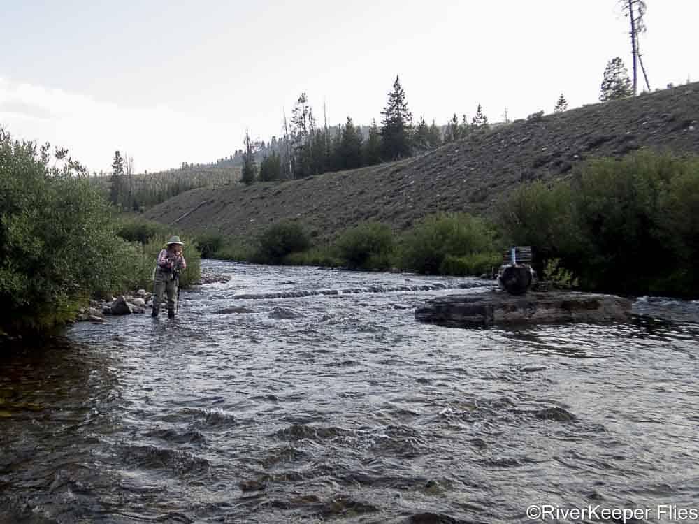 Fishing Grey's River   www.johnkreft.com