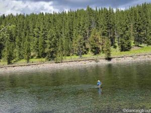 Our Last Week Fly Fishing Yellowstone Country