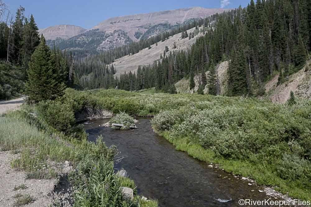 Headwaters of Grey's River   www.johnkreft.com