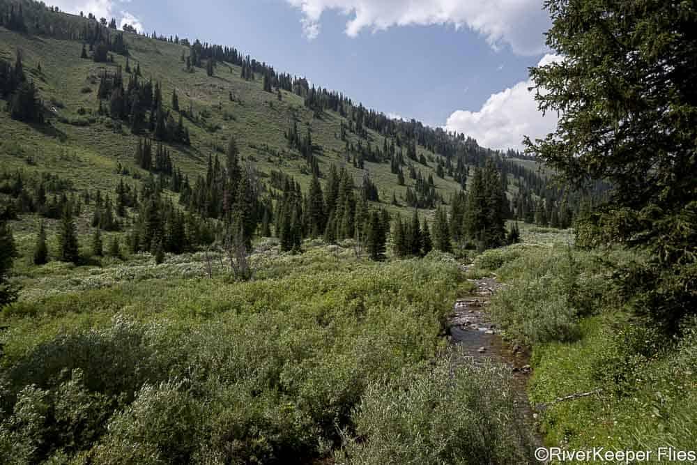 Headwaters of Smiths Fork River   www.johnkreft.com