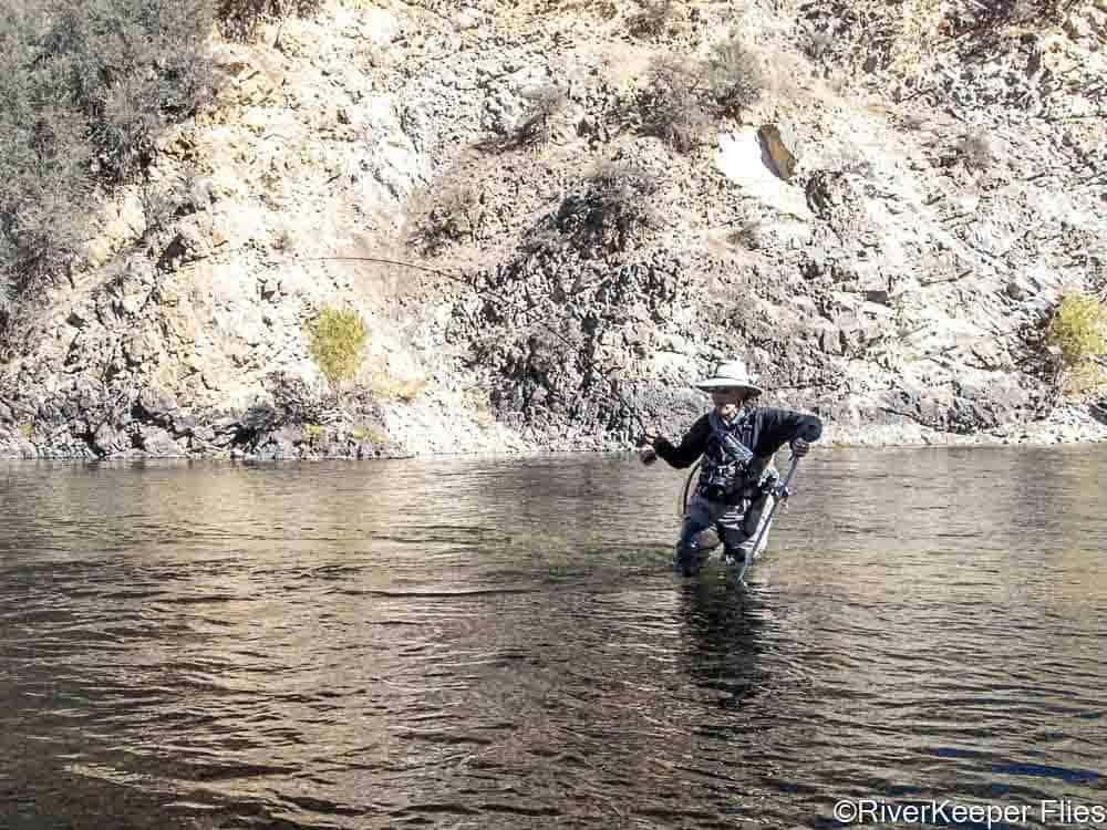 Playing Fish on Rock Wall - Bitterroot River   www.johnkreft.com