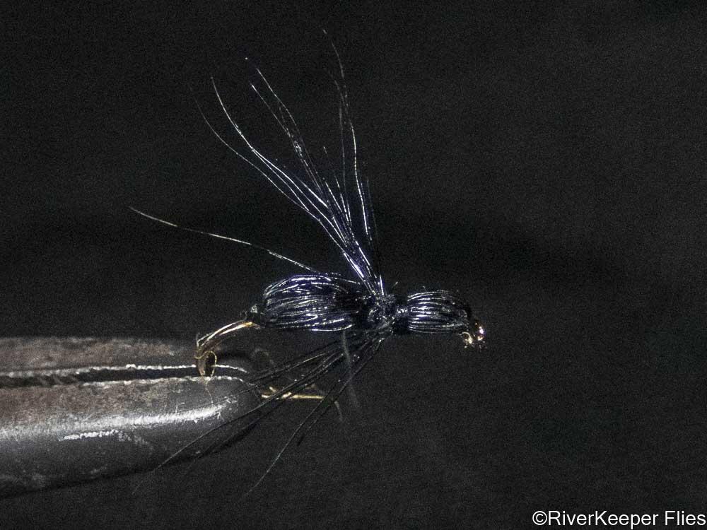 Stranahan's Black Ant   www.johnkreft.com