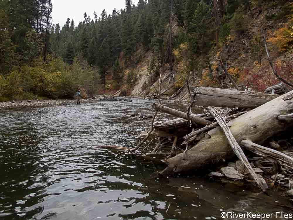 West Fork Bitterroot River Run   www.johnkreft.com